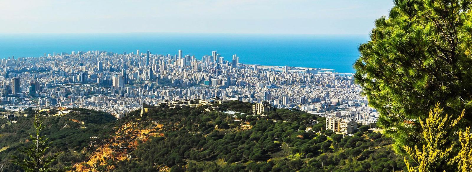 Upcoming Development Featuring Land Plots