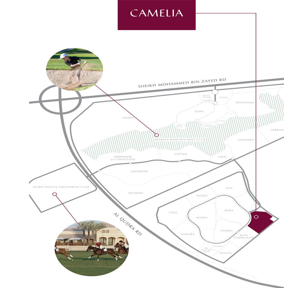 Camelia-Townhouses Master Plan